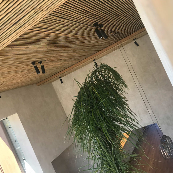 Poles | Petung by Caneplex Design
