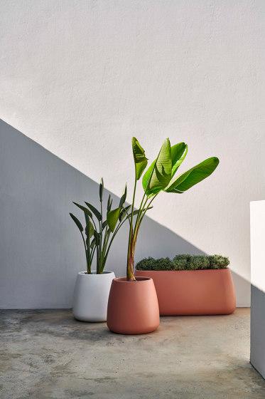 Sahara Plant Pot 3 by GANDIABLASCO