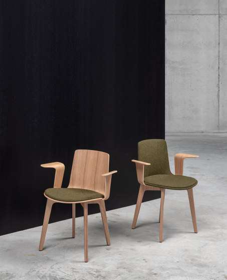 Lottus Wood chair - with wooden arms by ENEA