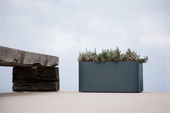 Sonora Plant Pot 4 by GANDIABLASCO