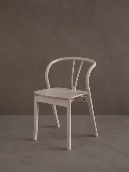 Flow | Dining Chair by L.Ercolani