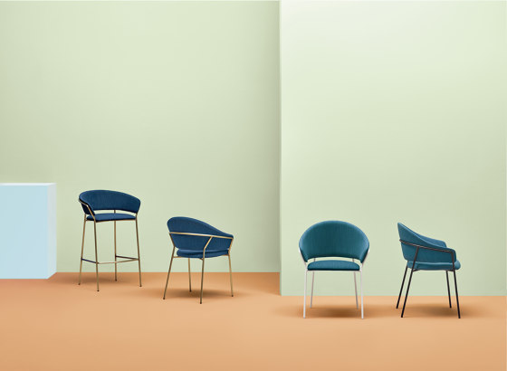 Jazz armchair 3716 by PEDRALI