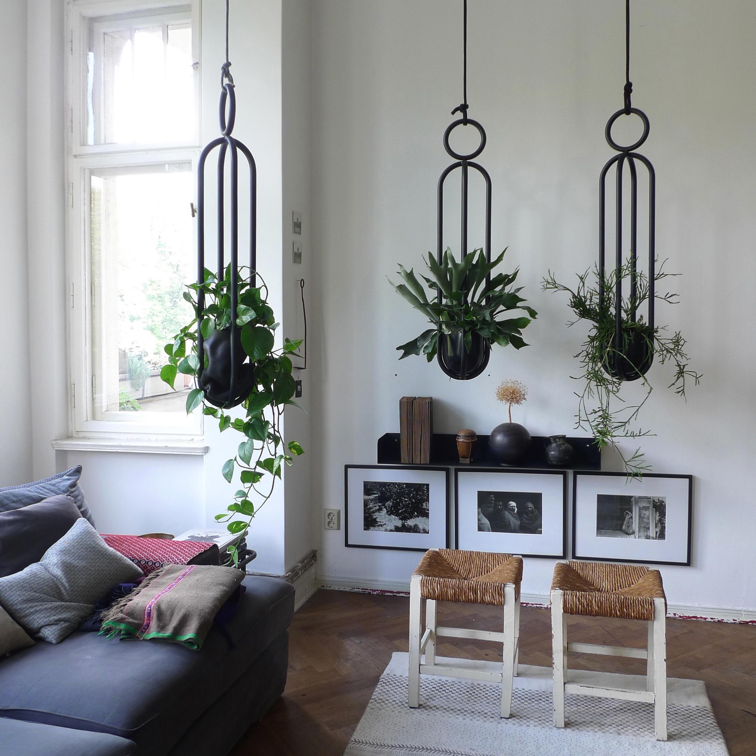 Blumenampel Edition hanging room object  Architonic