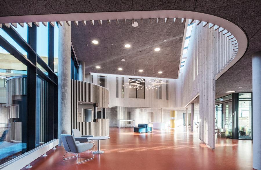 Vejle Psychiatric Hospital by Arkitema Architects | Hospitals