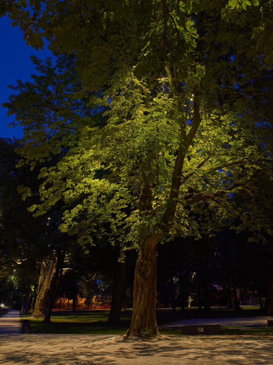 New Lighting for the City Park in Merzig by Tobias Link | Parks