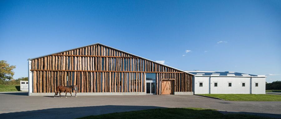 VG Horse Club by Drozdov&Partners | Detached houses