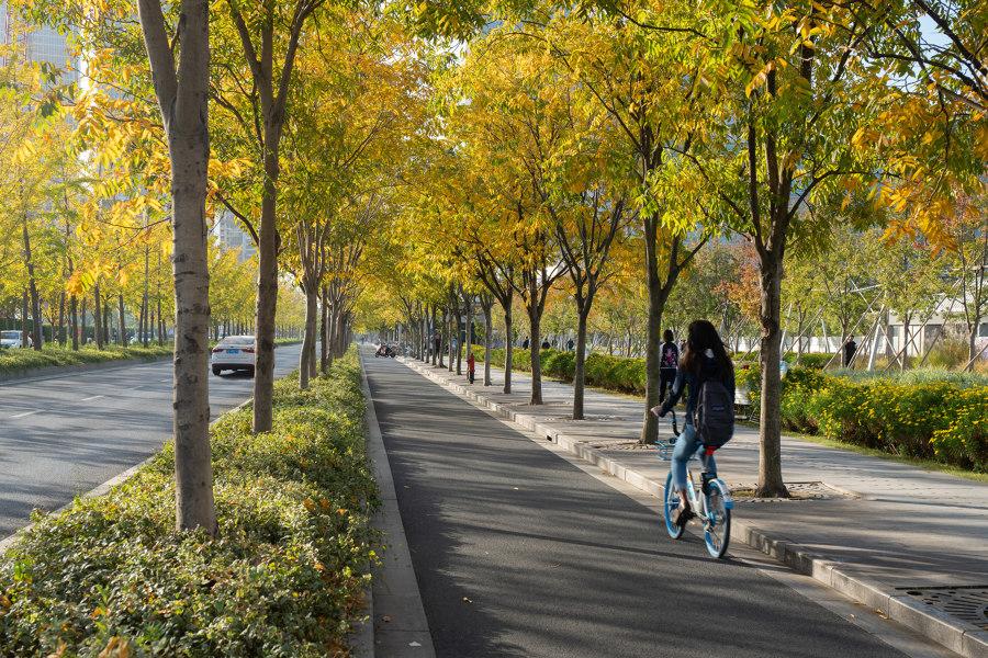 Xuhui Runway Park by Sasaki | Parks