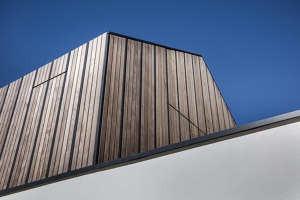Modern house | Detached houses | DIA - Dittel Architekten