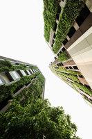 Ideo Morph 38 | Landscape design | Shma