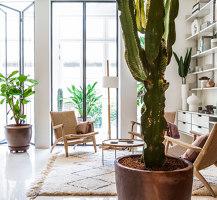 Argentona apartment | Living space | YLAB Arquitectos