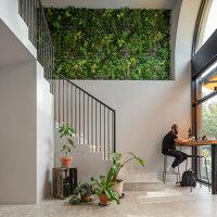 Kale & Crave | Restaurant interiors | Matteo Foresti