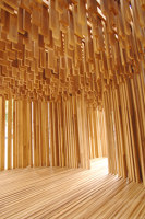 American Tulipwood Pavilion | Installations | David Adjaye