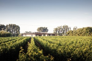 Weingut Nett | Construcciones Industriales | Architects Collective