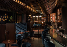Deep Dive | Bar-Interieurs | Graham Baba Architects