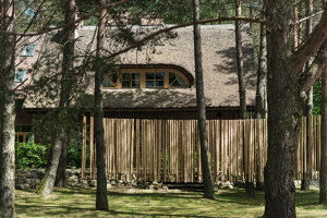 Spanish forest villa | Living space | Dizaino Virtuve
