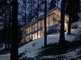 A purist in harmony with nature | Einfamilienhäuser | Cavigelli & Associates