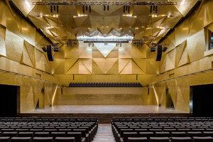Philharmonic Hall in Szczecin | Auditorium | Barozzi / Veiga