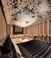 Voxman Music Building | Auditorium | LMN Architects