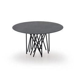 Octopus Tavolo | Dining tables | ARFLEX