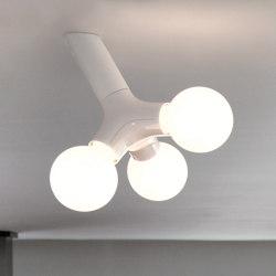 DNA wall / ceiling single | Lámparas de techo | next