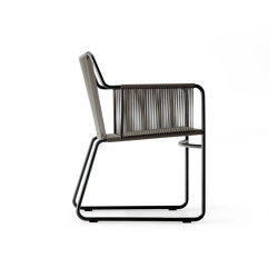 HARP 359 Dining Armchair | Chairs | Roda