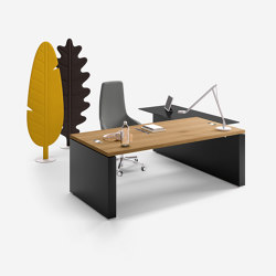 Ego executive | Desks | Sinetica Industries
