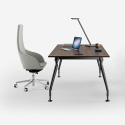 Glamour executive | Desks | Sinetica Industries