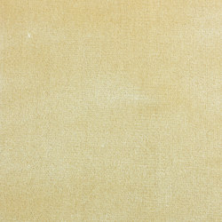Romeo & Giulietta | Col.103 Champagne | Drapery fabrics | Dedar