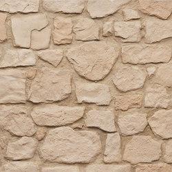 MSD Vieja Mamposteria 251 | Pannelli composto | StoneslikeStones