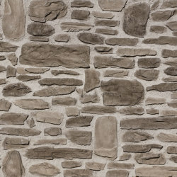 MSD Rustica anthracite 299 | Pannelli composto | StoneslikeStones