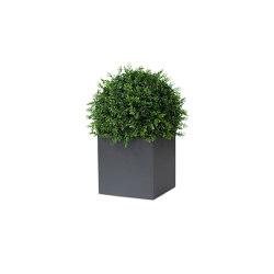 Planter / Flower pot | Linné Flower Pots | Maceteros | Röshults