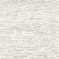 Rainforest Blanco | Ceramic tiles | Ceramica Mayor