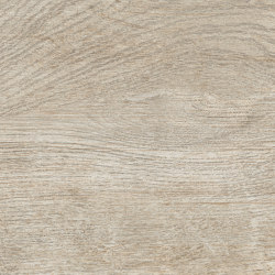 Rainforest Musgo | Ceramic tiles | Ceramica Mayor