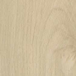 Fjord Beech Light | Planchas de madera | Pfleiderer