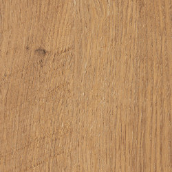 Pale Lancelot Oak | Wood panels | Pfleiderer