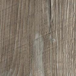 Ponderosa Pine | Wood panels | Pfleiderer