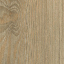 Fano Pine Nature | Wood panels | Pfleiderer