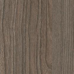 Ovid Elm Cinnamon | Wood panels | Pfleiderer