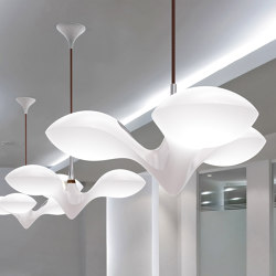 Enterprise pendant light | Suspended lights | next
