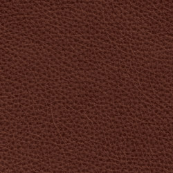 Count Comfort 86507 Camel | Natural leather | BOXMARK Leather GmbH & Co KG