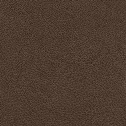 Count Comfort 86608 Buffalo | Natural leather | BOXMARK Leather GmbH & Co KG