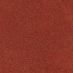 COUNT PRESTIGE 34113 Ginger | Naturleder | BOXMARK Leather GmbH & Co KG