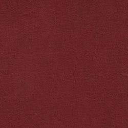 COUNT PRESTIGE 34135 Fireball | Naturleder | BOXMARK Leather GmbH & Co KG