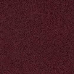 COUNT PRESTIGE 34166 Indianred | Naturleder | BOXMARK Leather GmbH & Co KG