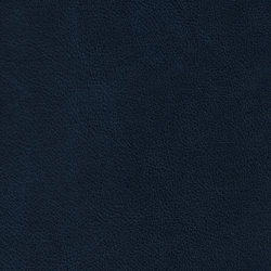 COUNT PRESTIGE 54121 Saphire Blue | Naturleder | BOXMARK Leather GmbH & Co KG