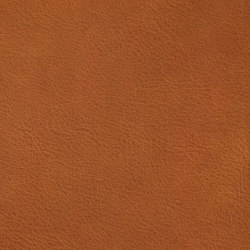 COUNT PRESTIGE 84112 Reddish Brown | Natural leather | BOXMARK Leather GmbH & Co KG