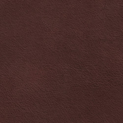 COUNT PRESTIGE 84136 Coffee | Cuero natural | BOXMARK Leather GmbH & Co KG