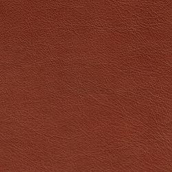 IMPERIAL PREMIUM 82111 Cognac | Cuero natural | BOXMARK Leather GmbH & Co KG