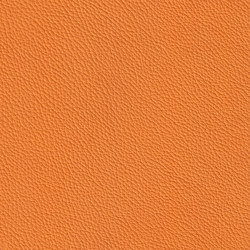 ROYAL 39177 Orange | Naturleder | BOXMARK Leather GmbH & Co KG