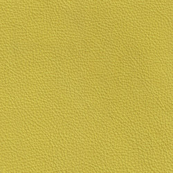 ROYAL 69200 Pistachio | Naturleder | BOXMARK Leather GmbH & Co KG